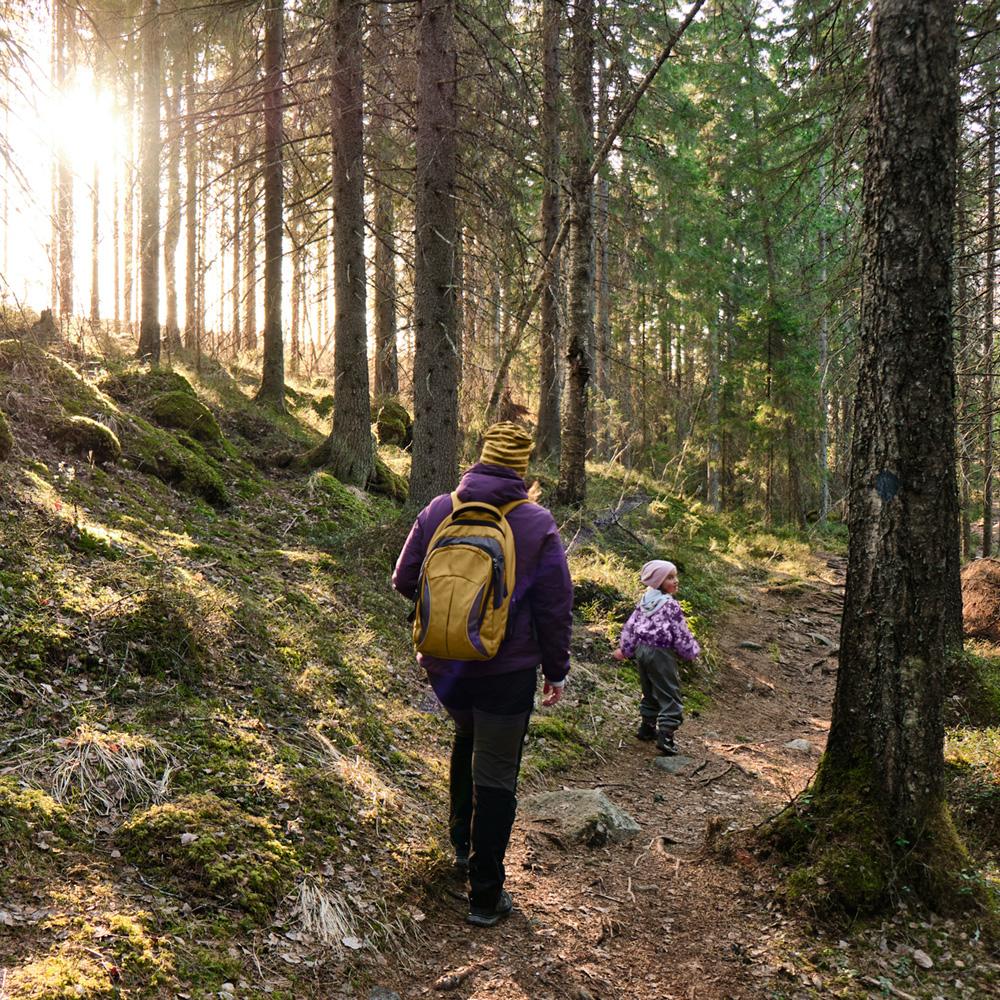 En vuxen och ett barn på en skogsstig.